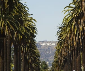 california, hollywood, and travel image