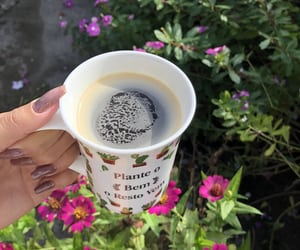 autoral, coffe, and flowers image