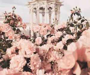 Fleurs and pink image
