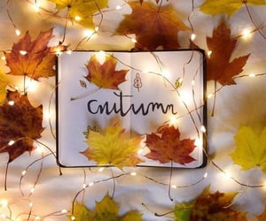 autumn, leaves, and fairy lights image