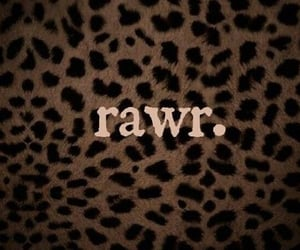rawr, leopard, and animal image