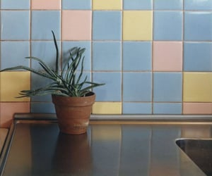pastel and tiles image