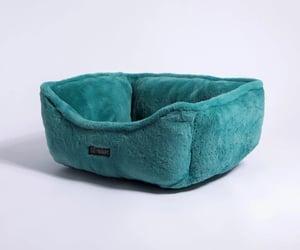 designer dog beds image