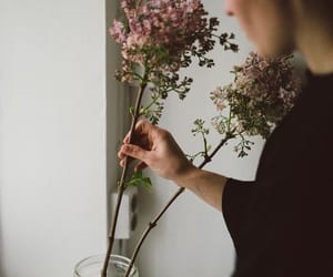 flower, garden, and ikebana image
