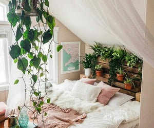 home, plants, and bedroom image