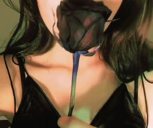 gif, rose, and kpop image