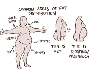 body, fat, and art reference image