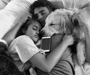 dog, sleep, and love image