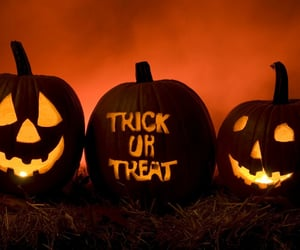Halloween, pumpkin, and trick or treat image
