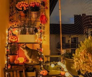 autumn, balcony, and cozy image