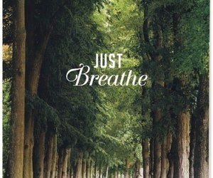 nature and tree. phrase image
