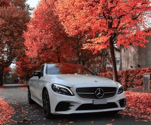 autumn, car, and colors image