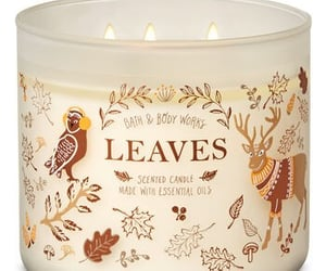 autumn, scented, and candles image