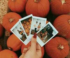 fall, autumn, and pumpkin image