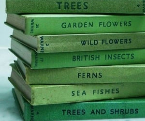 aesthetic, book, and green image
