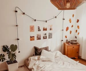 aesthetic, interior, and leaves image