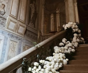 flowers, architecture, and girl image