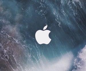 apple, classy, and minimalism image