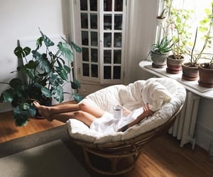 plants, room, and girl image