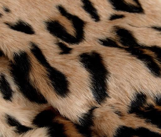Animal Print Discovered By Brittney Marvet