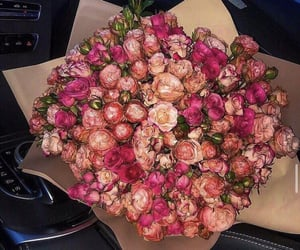 flowers, car, and fashion image
