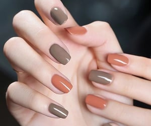 autumn, beauty, and trend image
