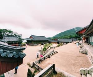 korea, peace, and nature image