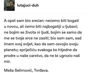 mesa selimovic and citati image