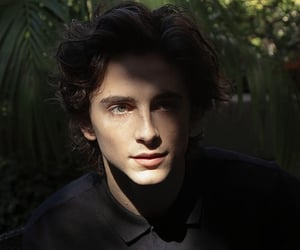 boy and timothee chalamet image