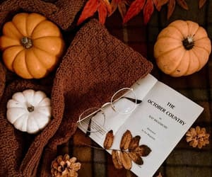autumn, pumpkin, and aesthetic image