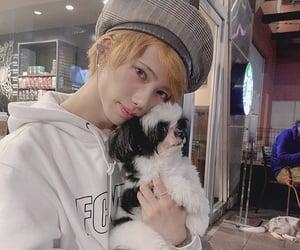 beauty, boy, and dog image