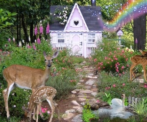 aesthetic, fairy, and cottagecore image