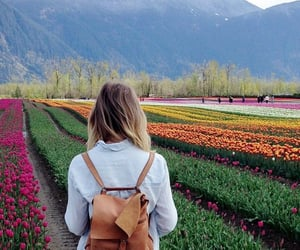 flowers, landscape, and girl image