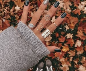 rings, autumn, and jewelry image