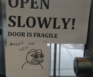 funny, fragile, and meme image