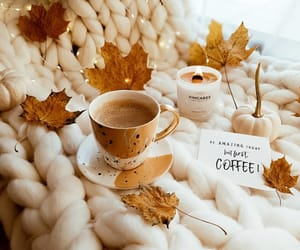 autumn, coffee, and blanket image