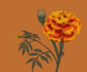 dia de muertos, drawing, and flower image
