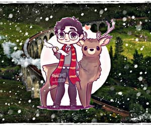 harry potter, james potter, and maraunders image