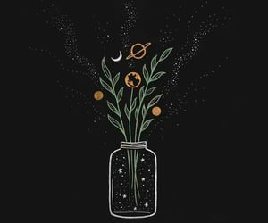flowers, art, and universe image
