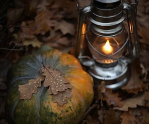 autumn, decorations, and lights image