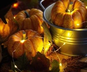 autumn, decorations, and pumpkins image