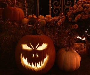 Halloween, pumpkin, and pumpkins image