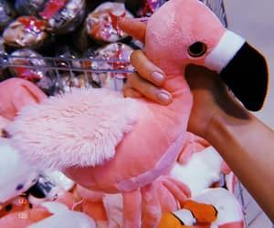 aesthetic, alternative, and flamingo image