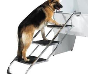 pet furniture, pet stairs, and selectfurniturestore image
