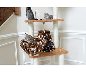 cat bed, cat tree, and comfort image