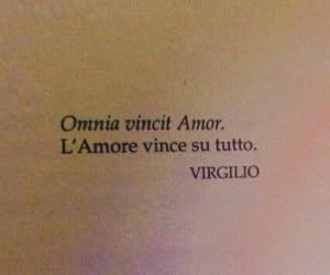amore, frase, and text image