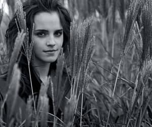 Image by lili picsite