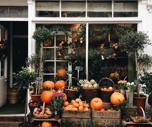 Th last of October 🍁🍂🎃
