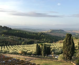nature, green, and italy image