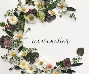 hello, november, and wallpapers image